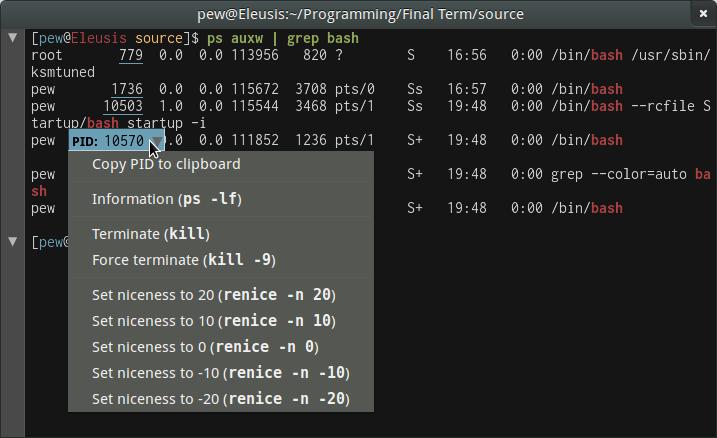 Final Term – a modern terminal emulator